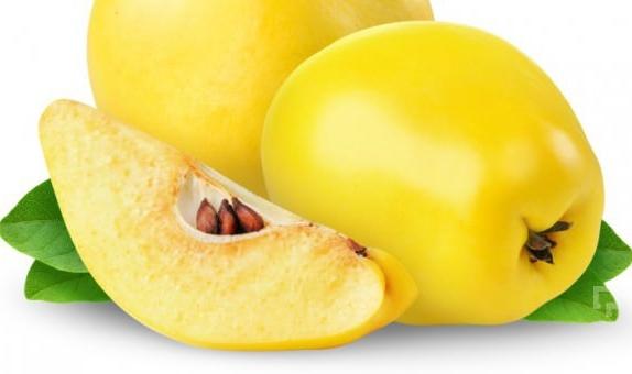 Айва - полезные свойства и противопоказания для здоровья