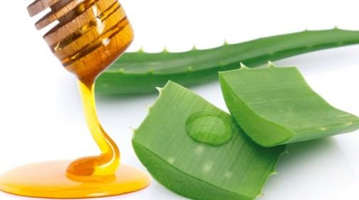 Алоэ с медом от кашля - рецепты для детей и взрослых