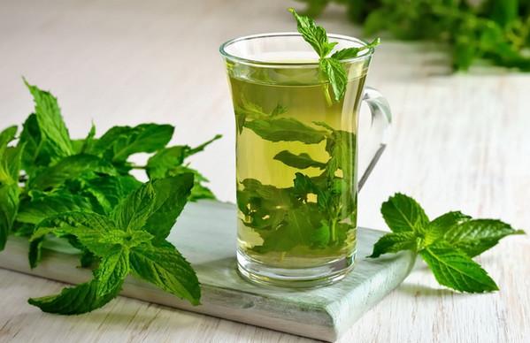 Лечебные рецепты с мятой,чай