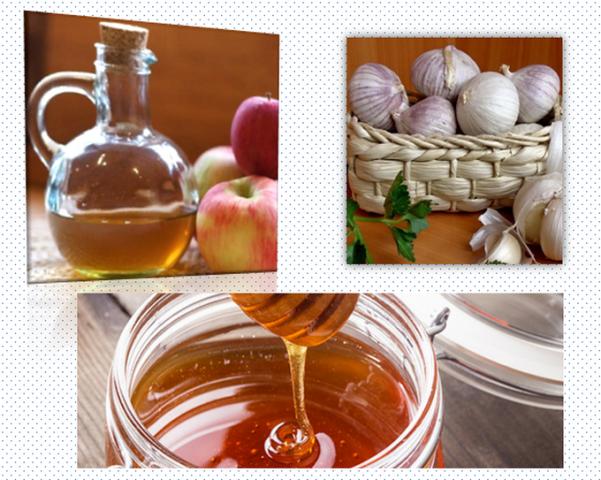 Яблочный уксус с мёдом и чесноком в народной медицине