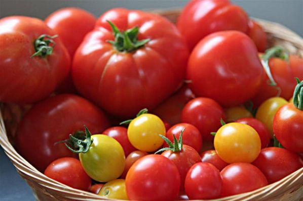 помидоры польза и вред для организма