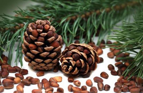 Орехи кедрового дерева для женщин