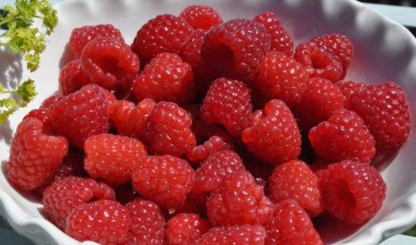 Как выбрать ягоды