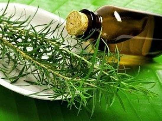 Описание эфирного масла