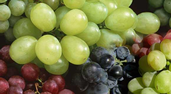 Состав ягод винограда