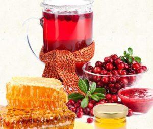 Клюква с медом - польза и вред, рецепты народной медицины