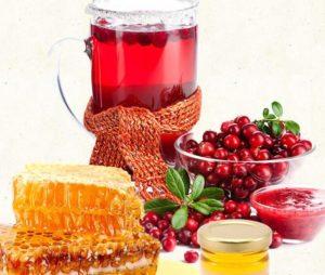 Клюква с медом: чем полезна, от чего помогает, как приготовить. Клюква с медом: полезные свойства, применение, противопоказания Клюква мед хрен от чего помогает