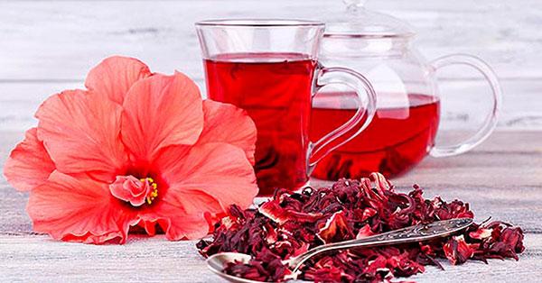Что такое чай каркаде?