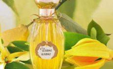 Эфирное масло иланг-иланг — свойства и применение. Описание, отзывы