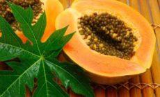 Папайя — польза и вред для организма. Описание плода, состав