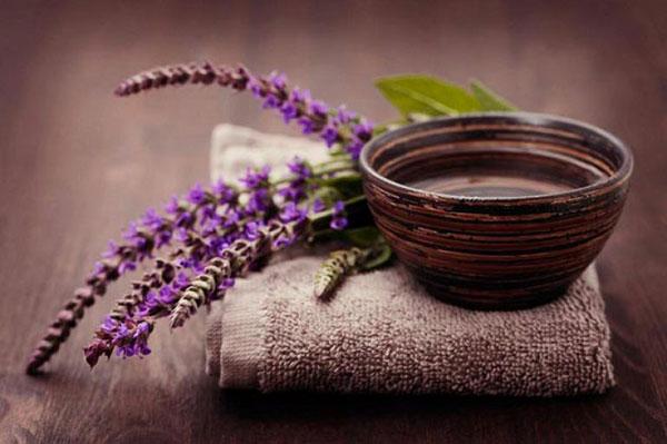 Народная медицина и шалфей, рецепты