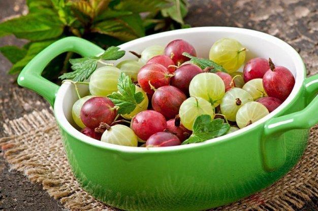 Ягоды для приготовления лекарственных средств берут свежие и сушёные.