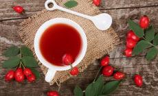 Отвар шиповника: польза и вред. Состав и калорийность ягод