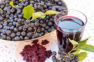 Черноплодная рябина лечебные свойства и противопоказания
