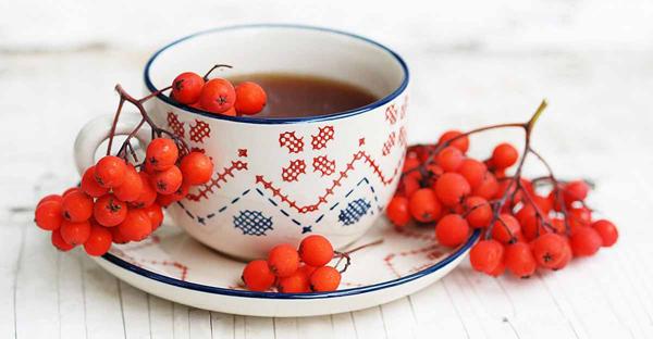 Чай с рябиной и шиповником