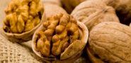 Грецкий орех: польза и вред для организма. Лечебные свойства