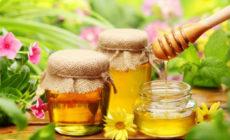 Мёд: полезные свойства и противопоказания Отзывы