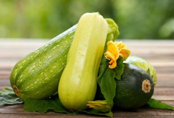 Кабачки: польза и вред для организма женщины, для мужчины При похудении Калорийность Отзывы