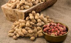 Арахис: польза и вред для организма женщины, для мужчины Сколько нужно съесть Отзывы врачей